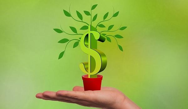 アフィリエイトは農業みたいなものです【金のなる木を育てよう】